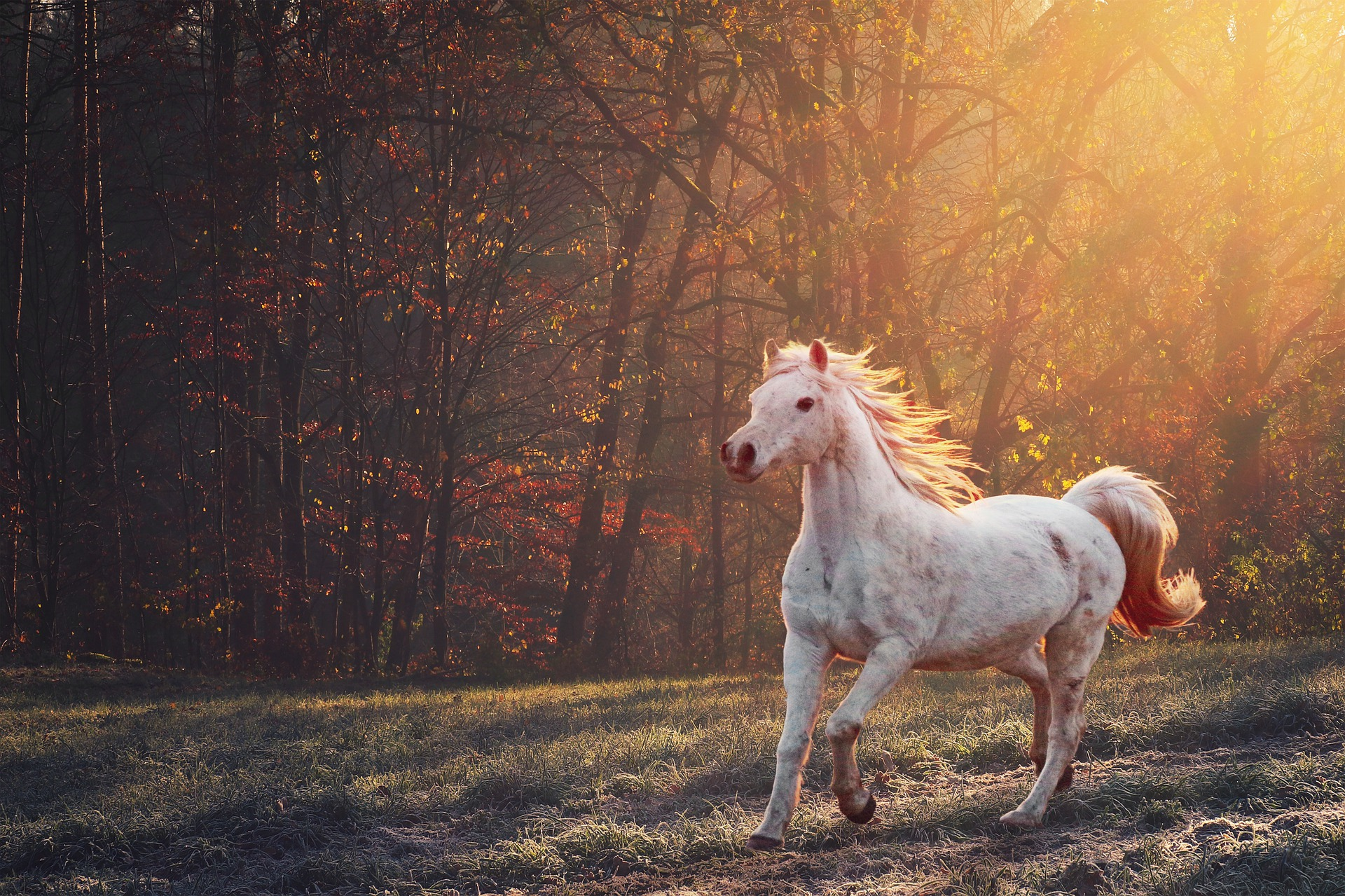 How to Get Back on the Creative Horse